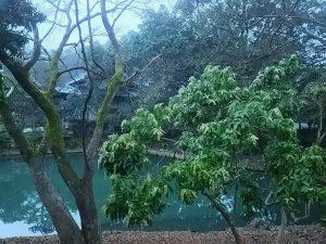 梅松苑 ~2月13日~